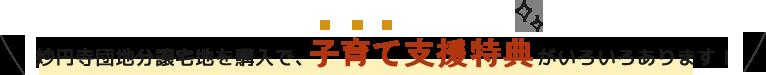 妙円寺団地分譲宅地を購入で、子育て支援特典がいろいろあります!